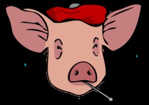 Swine flu... will it kill us all?