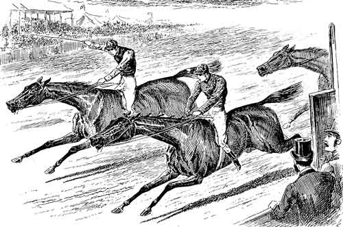 Horse racing neck and neck
