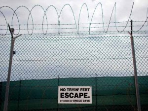 No tryin' fert escape